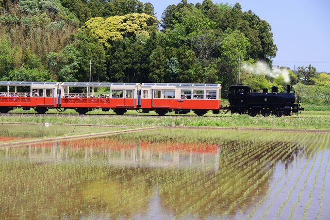 田園風景を走るSL型ディーゼル機関車「里山トロッコ号」