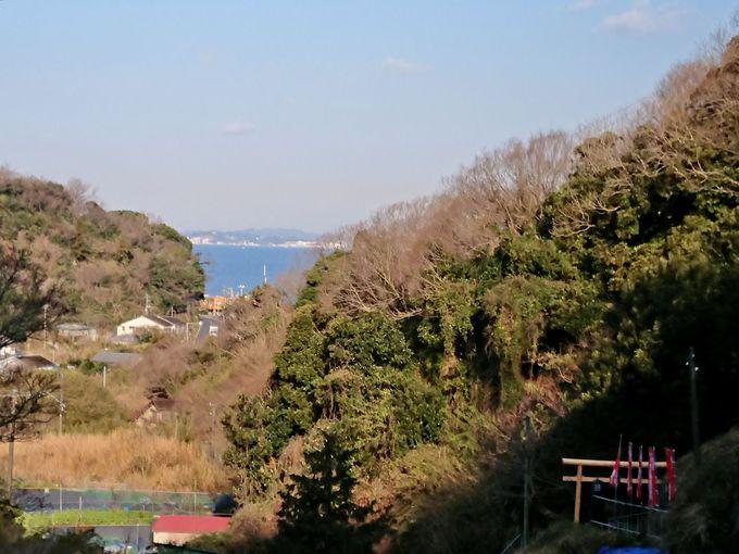 見渡す先は東京湾の青い海!