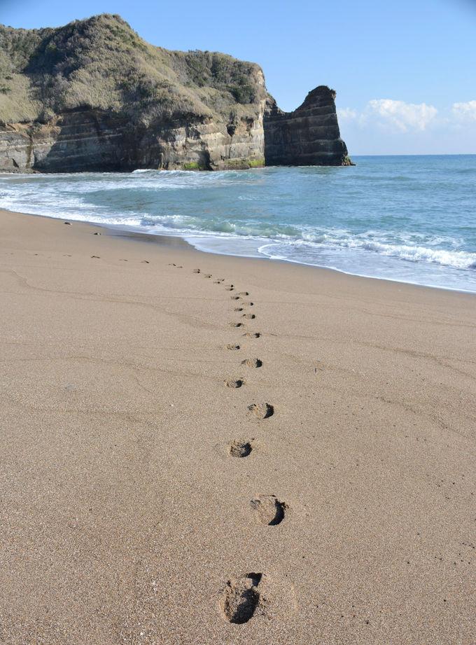 地球を感じながら美しいビーチをひとり占め!