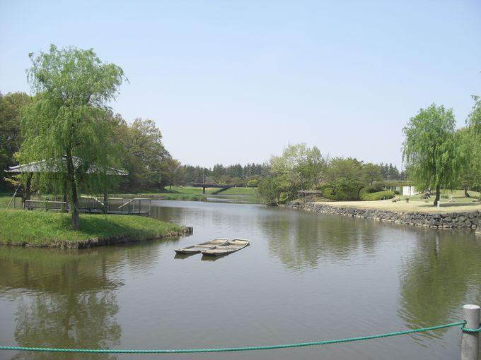 敷地面積25ヘクタールの古河総合公園は桃の花が有名