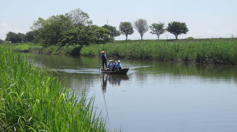 長さ5mの竹竿で操る揚舟!群馬の水郷・板倉町