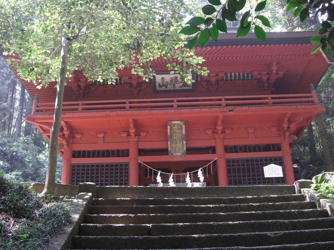 長い石段を上った先に鮮やかな朱色の随神門が迎えてくれる!!