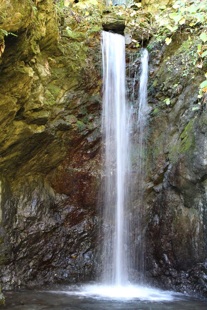 鍾乳洞から湧き出る湧水が直接流れ落ちる・大悲の滝