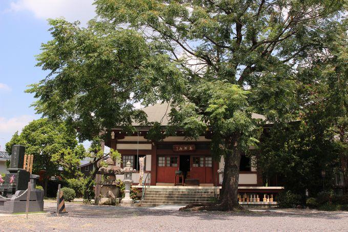 未年と申年の守り本尊の正樹院、戌年と亥年の守り本尊の西念寺