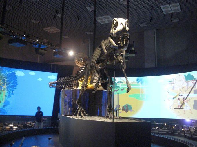 3.国立科学博物館