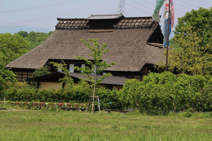 赤城の農家を再現した「かやぶき民家」!当時は身分の低い農民には許されなかった建物!!