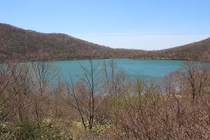 晩春の小沼に春の訪れ!コバルトブルーに輝く湖面と芽吹く若葉!!