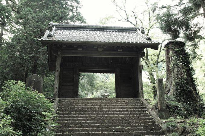 太平山大中寺は北条氏康と上杉謙信が和議を結んだ名刹!