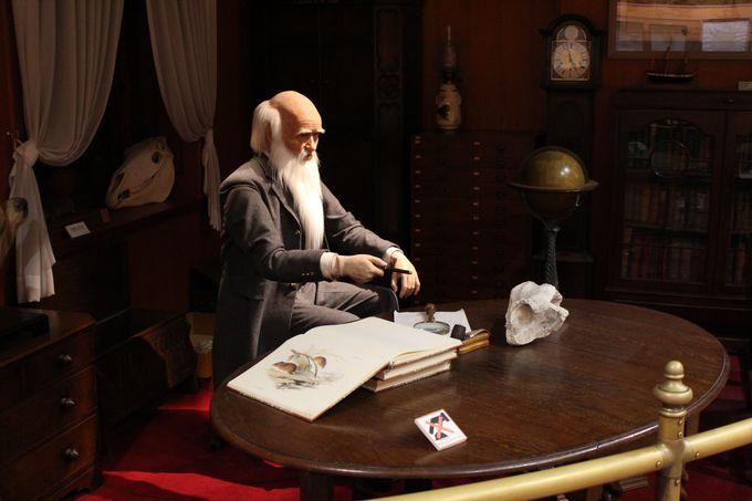 見て、触れる展示コーナー「ダーウィンの部屋」は人型ロボットのチャーリーが案内!