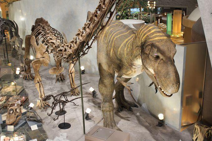 地球は恐竜の時代になり、そして哺乳類が支配する!