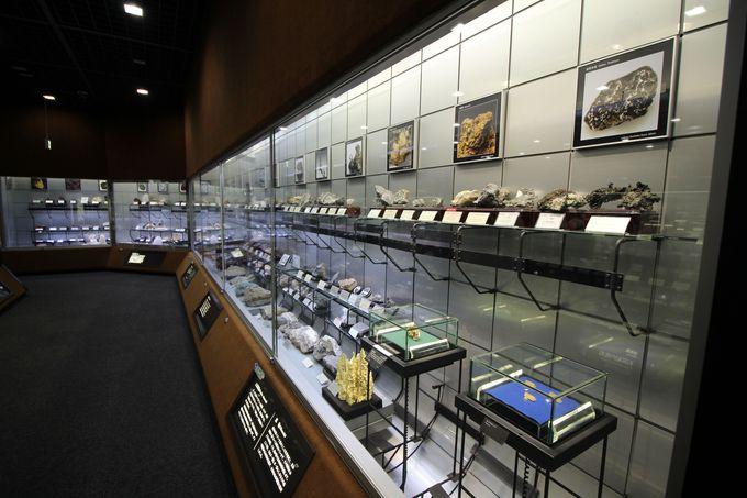 第4展示場は、年代別の化石の展示と金、銀、水晶などの鉱物の分類展示