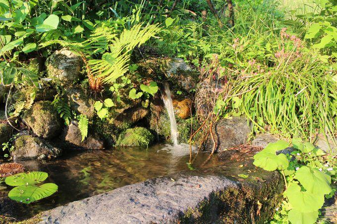 尾又温泉は湯の沢川の清流に沿った小さな温泉地