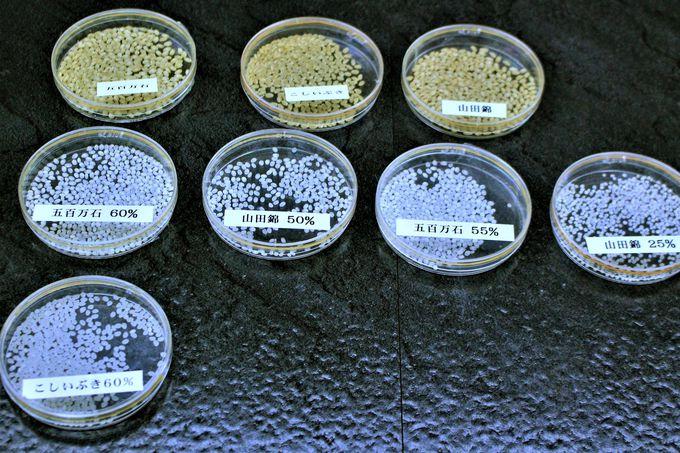 八海山の伏流水で仕込まれたお酒!「清酒八海山」の旨さがわかる酒蔵見学