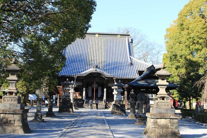 土塁と堀に囲まれた鑁阿寺(史跡足利氏宅跡)は日本名城百選