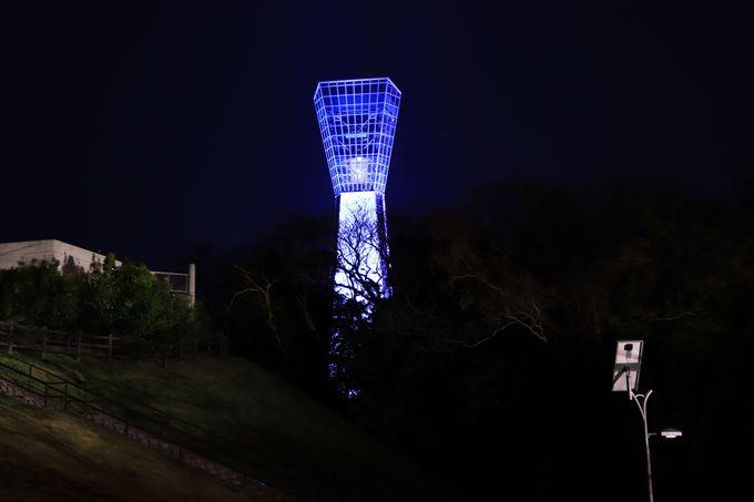 小名浜港一望の「港の見える丘」夜のマリンタワーも綺麗