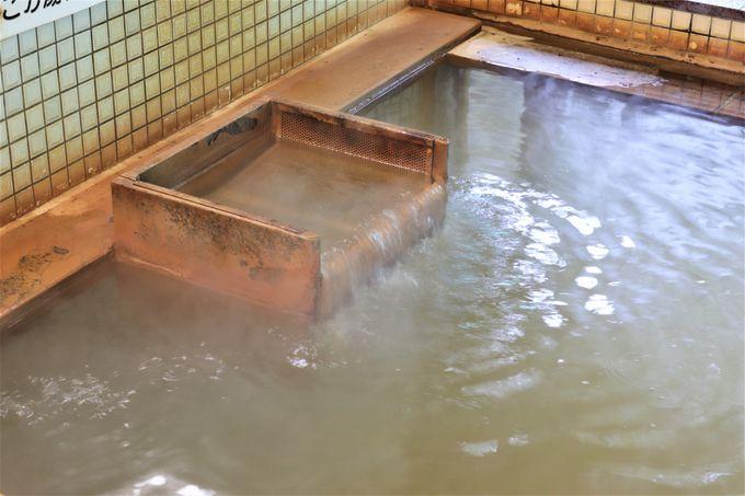成分の濃い高張性の温泉が源泉かけ流し!日帰り入浴も