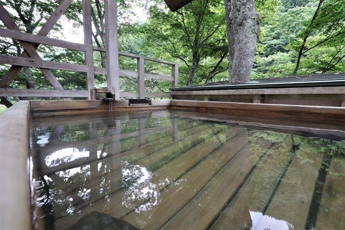 客室から眺める風景と、木の上にある貸切上露天風呂
