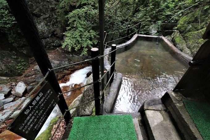 風景が背景絵のような大浴場と、野趣あふれる仙人露天岩風呂