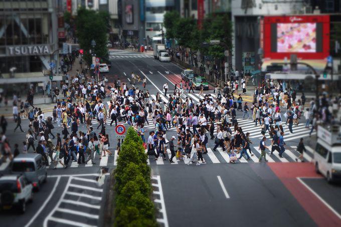 6.渋谷スクランブル交差点