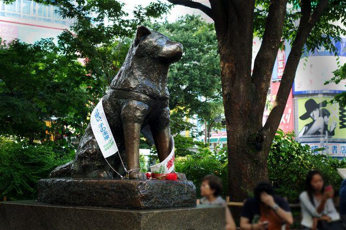 4.忠犬ハチ公像