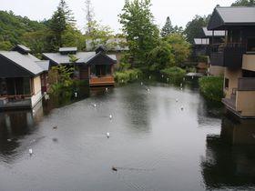自然と共生した極上リゾート「星のや 軽井沢」で贅沢な休息を!