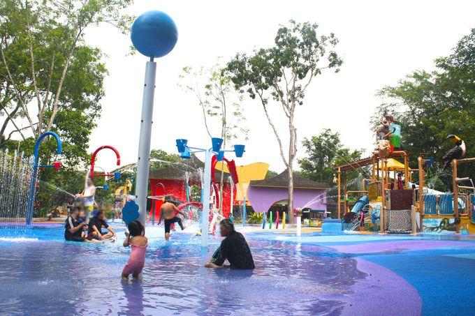1.シンガポール動物園