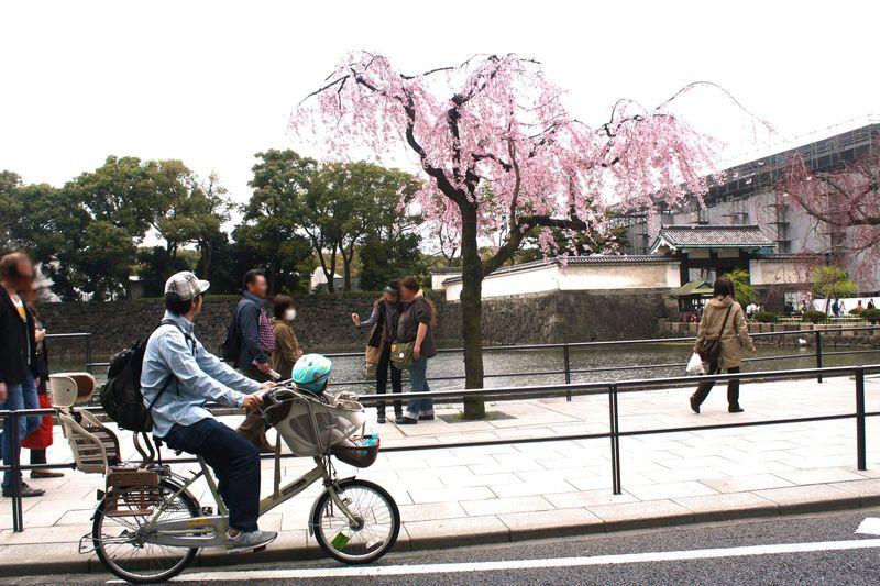 親子で楽しむ丸の内!東京駅前でぎゅっと観光する半日プラン