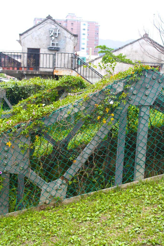 周辺には珠玉の散歩コース!「大安森林公園」・「台湾大学」・「四四南村」