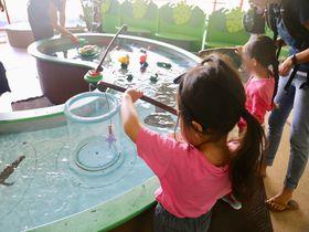 子連れ必見!室内遊びはハワイ・チルドレンズ・ディスカバリー・センター