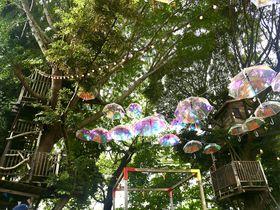 街中の秘密基地!ツリーハウスがあるカフェ・千葉「椿森コムナ」