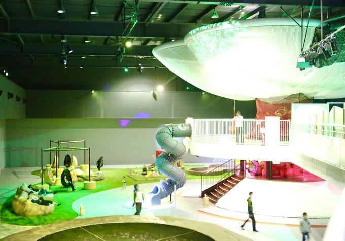 日本最大!屋内で思いっきり遊べる「巨大ネットの森 SUMIKA」