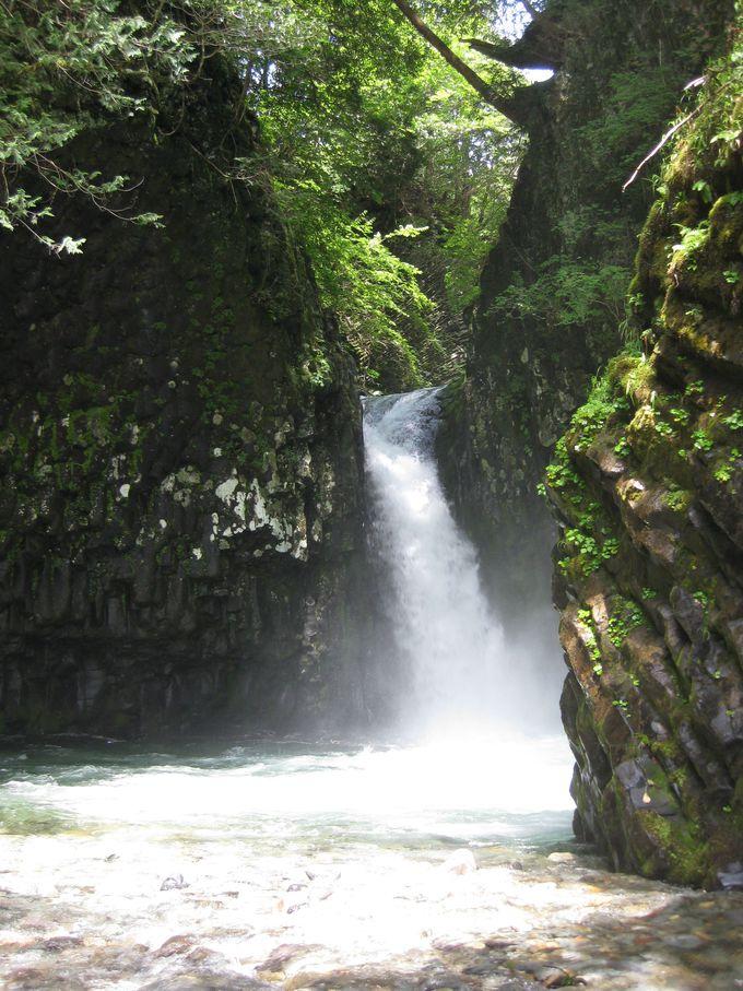 滝の轟きが響き渡る!「からたに滝」