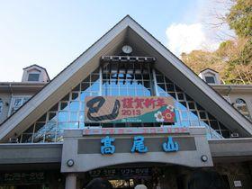 寒くても訪れたい!登山客数世界一の高尾山・冬の魅力