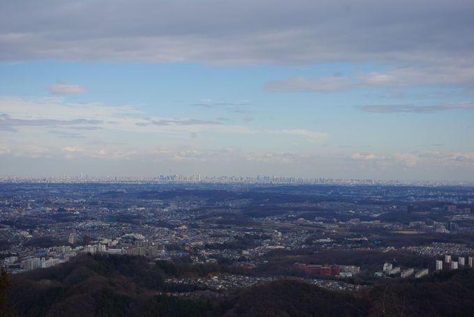 これぞ冬の特権!霞台展望台から東京を一望