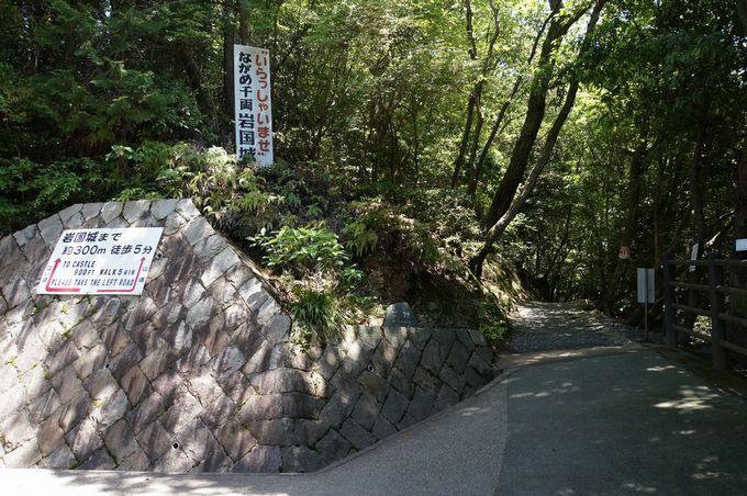 究極の選択!?山道と広い道、どちらを行く!?