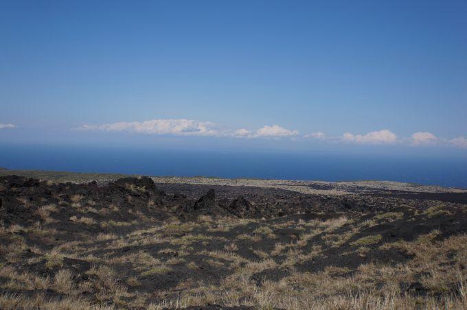 溶岩の跡が黒く残る三原山。実は意外とフォトジェニック!?