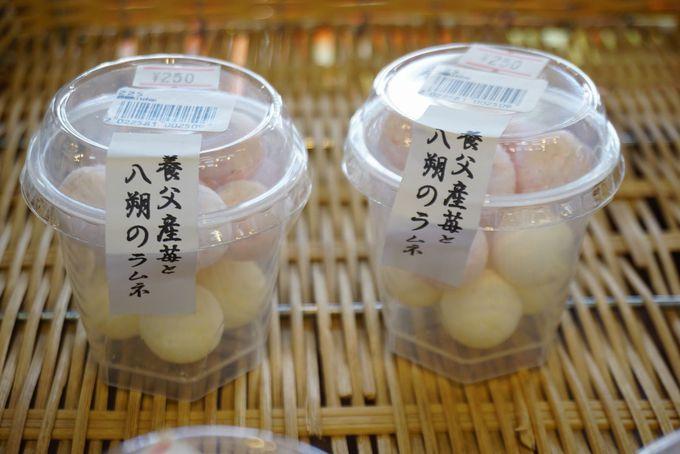 道の駅ようか但馬蔵で山椒ソフトクリームを食べよう!