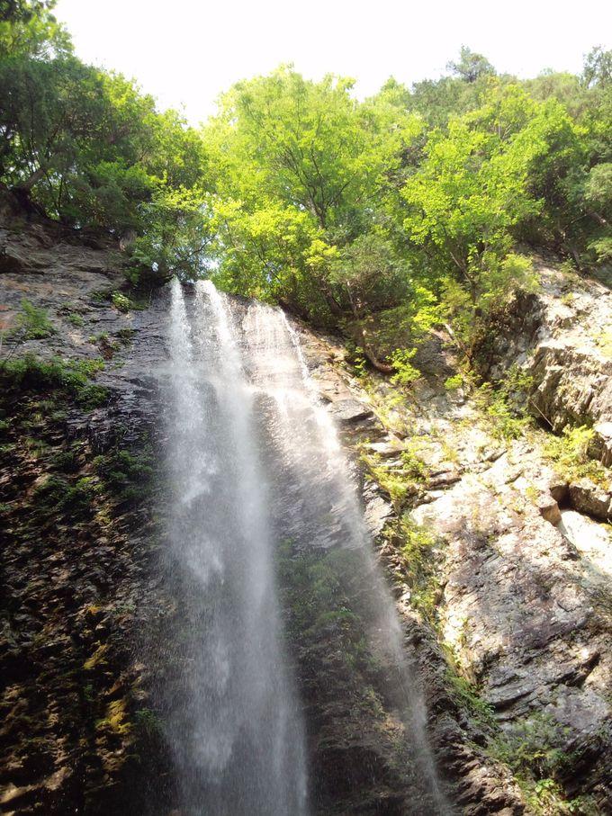 裏側からの滝見! 新滝