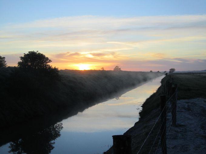 小川の朝もやも見れる日の出も必見!