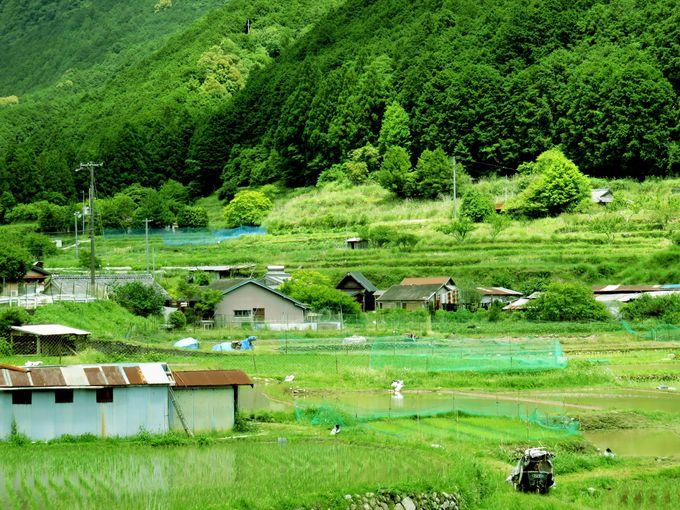 季節の様々な田舎暮らし体験