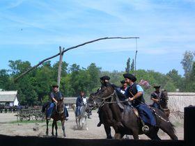 ハンガリーの良さが凝縮!牧場で楽しむ「プスタプログラム」