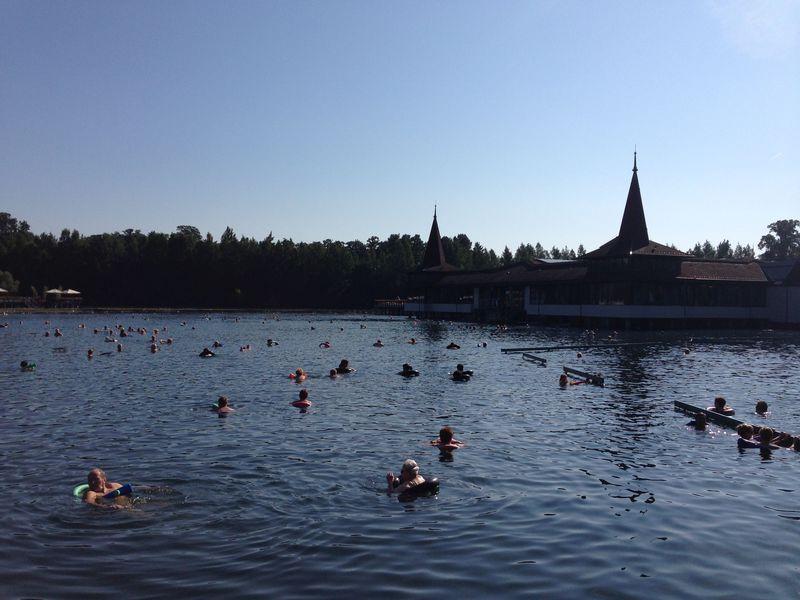 温泉大国ハンガリーでもイチオシ!へーヴィーズ温泉湖は真冬でもスイレンの花が咲く