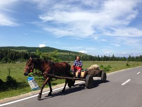 ルーマニアの秘境〜知られざるセーケイ地方ハルギタ県の文化と自然