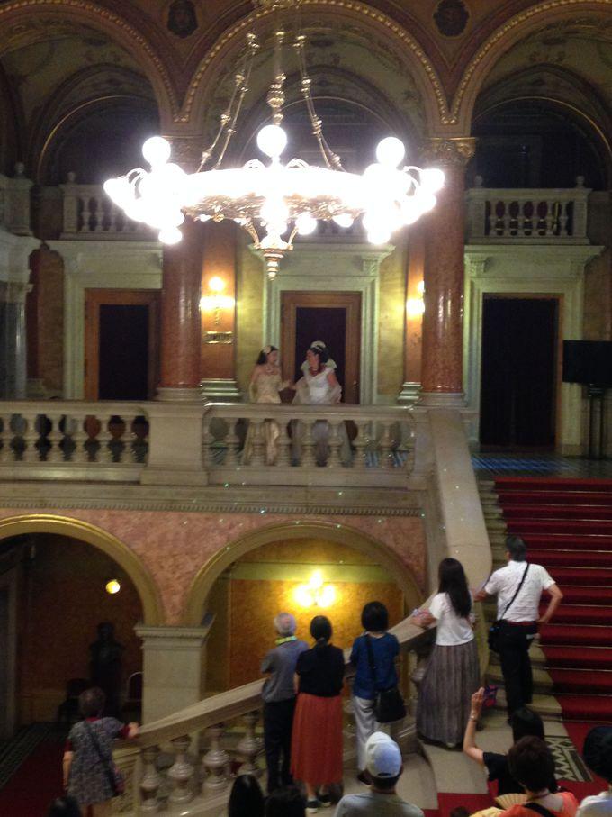 観光重視派にはオペラ座見学ツアーも!