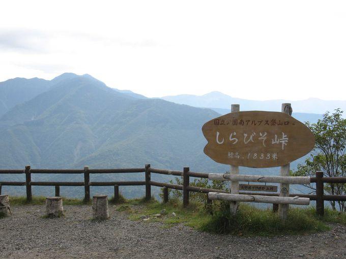 雄大な南アルプスの山々を眺望できる「しらびそ峠」