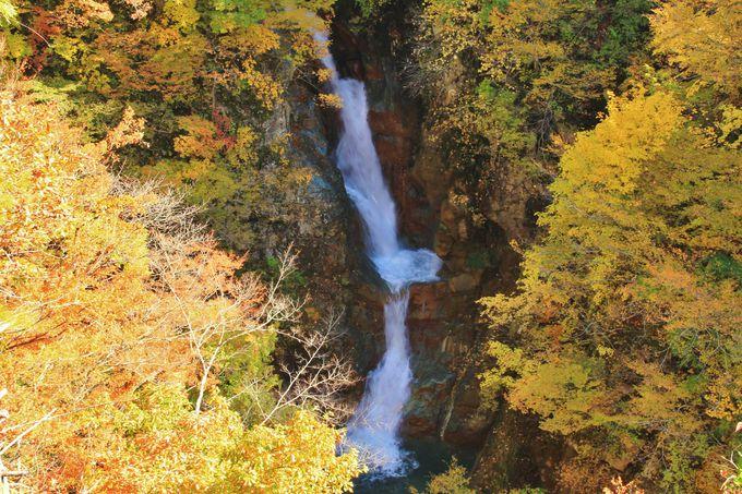 紅葉や新緑が美しい「蛇淵の滝」