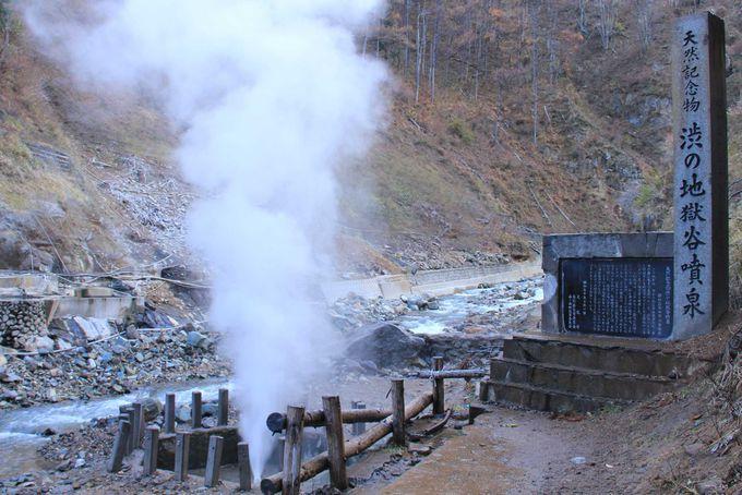 地獄谷温泉の噴泉見物と温泉入浴もできます。