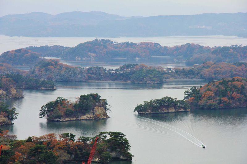 日本三景松島の眺望と三陸の海の幸が並ぶ塩釜水産物仲卸市場へ