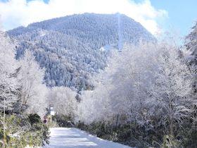 冬におすすめのドライブスポット10選 氷の絶景や初日の出スポットまで!