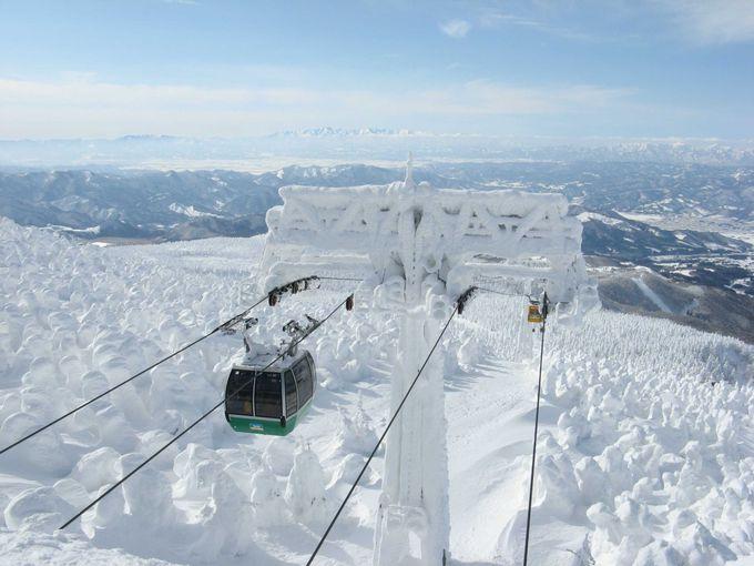 驚愕のアイスモンスター!無数の樹氷が360度広がる絶景「蔵王」(山形)
